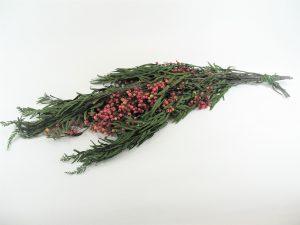 STABILIZOVANÝ PEPPER TREE 30-60CM